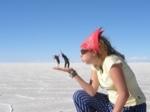 Holly travel blog